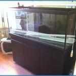 Aquarium panelling complete