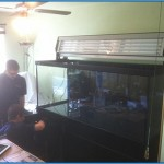 Installing the aquarium lighting