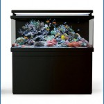 Red Sea Max S Series 650