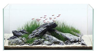 TMC Signiture Aquariums